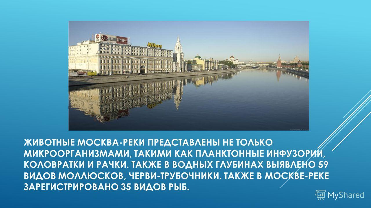 водные богатства москвы презентация 4 класс