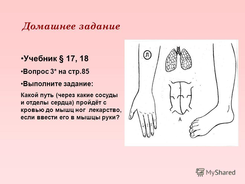 Домашнее задание Учебник § 17, 18 Вопрос 3* на стр.85 Выполните задание: Какой путь (через какие сосуды и отделы сердца) пройдёт с кровью до мышц ног лекарство, если ввести его в мышцы руки?