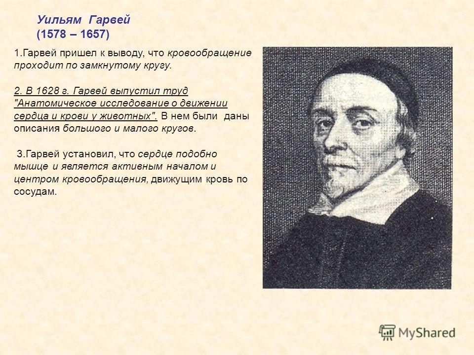 Уильям Гарвей (1578 – 1657) 1.Гарвей пришел к выводу, что кровообращение проходит по замкнутому кругу. 2. В 1628 г. Гарвей выпустил труд