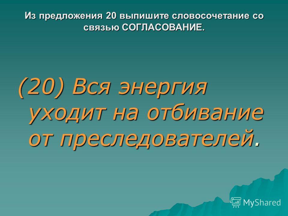 Из предложения 20 выпишите словосочетание со связью СОГЛАСОВАНИЕ. (20) Вся энергия уходит на отбивание от преследователей.