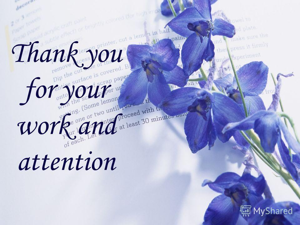 Thank you for your work and attention