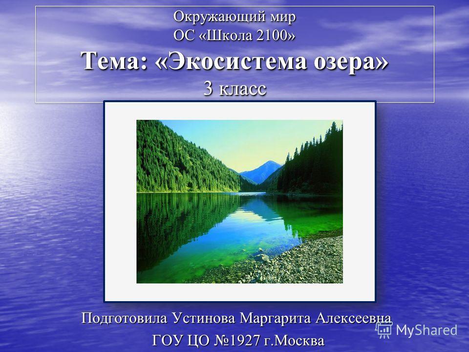 Реферат на тему экосистема озера 3 класс