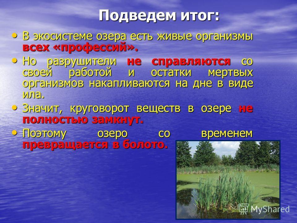 В экосистеме озера есть живые организмы всех «профессий». Но разрушители не справляются со своей работой и остатки мертвых организмов накапливаются на дне в виде ила. Значит, круговорот веществ в озере не полностью замкнут. Поэтому озеро со временем