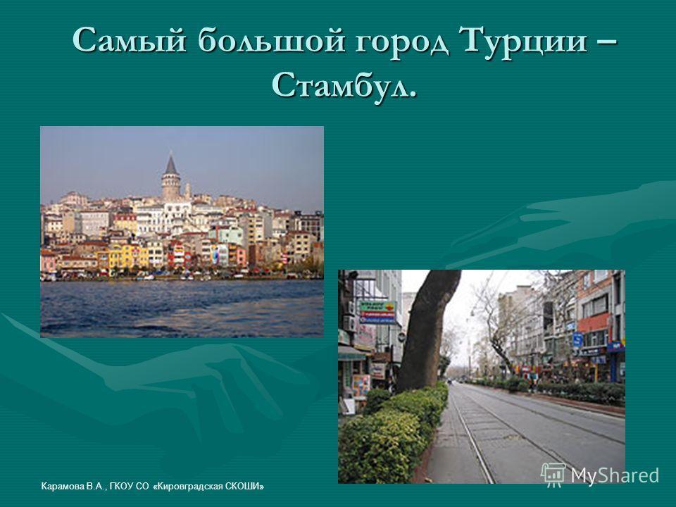 Самый большой город Турции – Стамбул. Карамова В.А., ГКОУ СО «Кировградская СКОШИ»