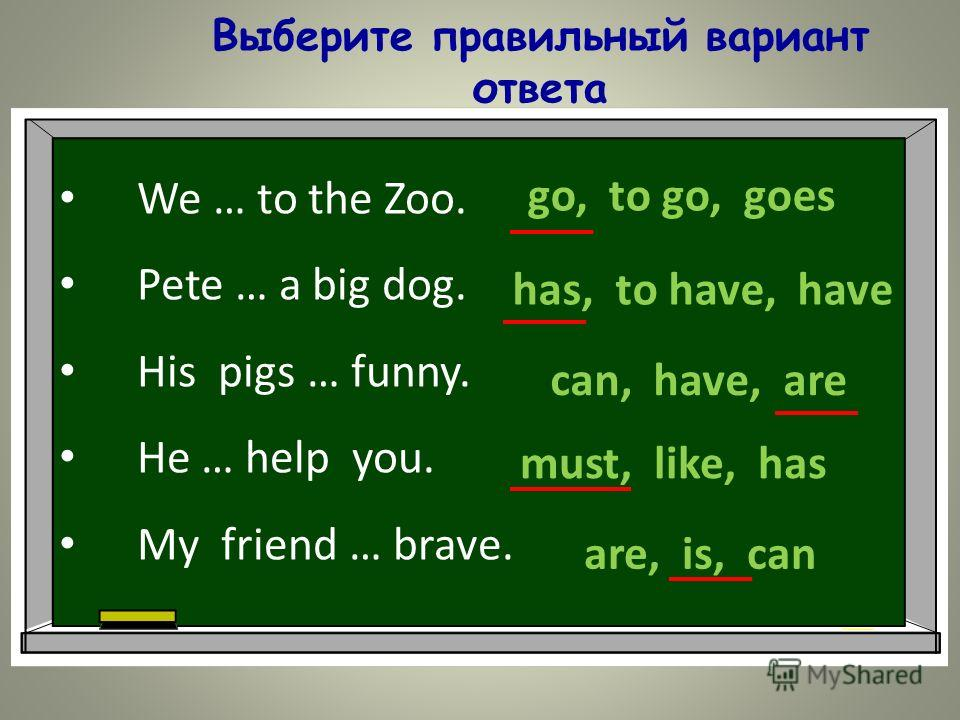 Выберите правильный вариант ответа We … to the Zoo. Pete … a big dog. His pigs … funny. He … help you. My friend … brave. go, to go, goes has, to have, have can, have, are must, like, has are, is, can