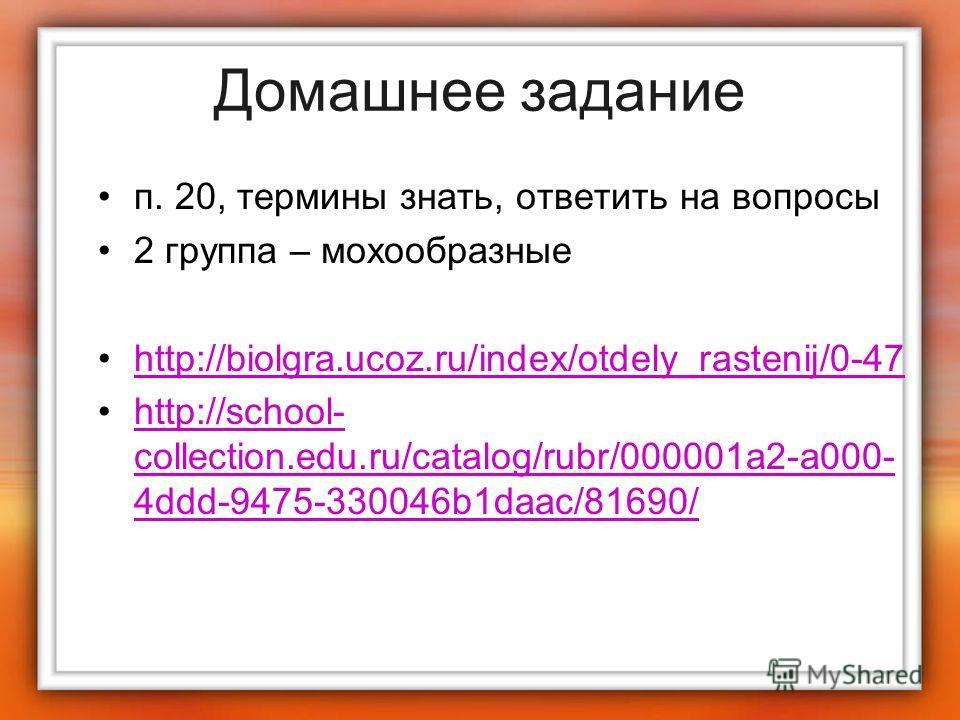 Домашнее задание п. 20, термины знать, ответить на вопросы 2 группа – мохообразные http://biolgra.ucoz.ru/index/otdely_rastenij/0-47 http://school- collection.edu.ru/catalog/rubr/000001a2-a000- 4ddd-9475-330046b1daac/81690/http://school- collection.e