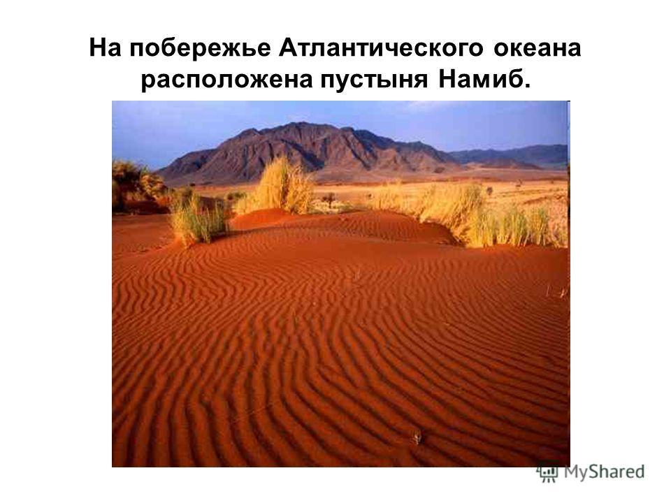 На побережье Атлантического океана расположена пустыня Намиб.