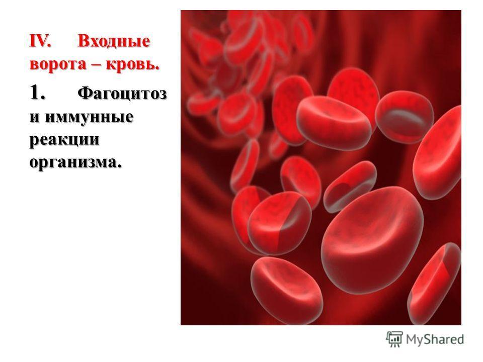 IV.Входные ворота – кровь. 1. Фагоцитоз и иммунные реакции организма.