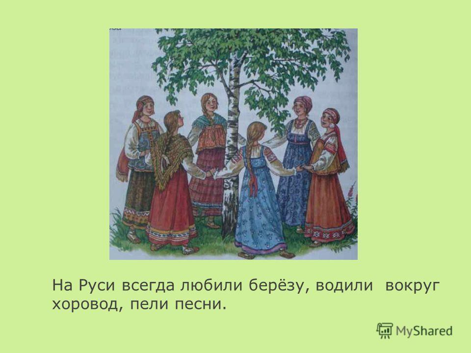 На Руси всегда любили берёзу, водили вокруг хоровод, пели песни.