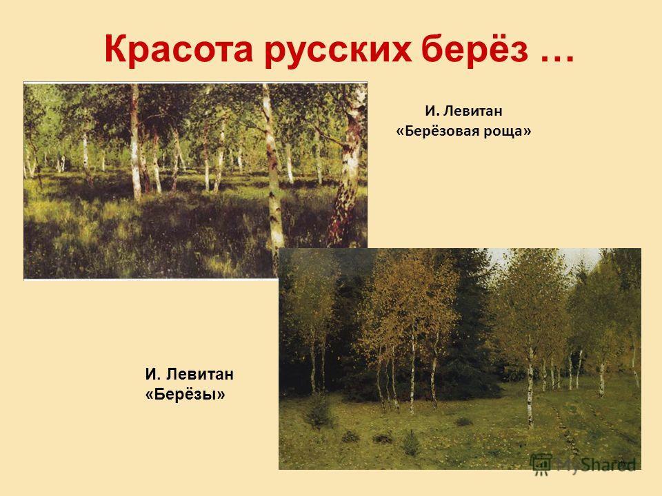 Красота русских берёз … И. Левитан «Берёзы» И. Левитан «Берёзовая роща»