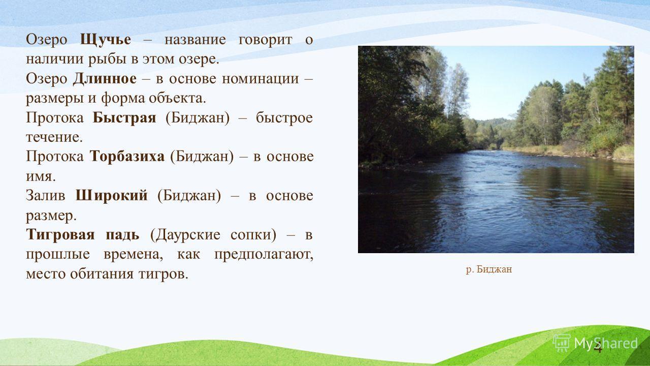 Озеро Щучье – название говорит о наличии рыбы в этом озере. Озеро Длинное – в основе номинации – размеры и форма объекта. Протока Быстрая (Биджан) – быстрое течение. Протока Торбазиха (Биджан) – в основе имя. Залив Широкий (Биджан) – в основе размер.