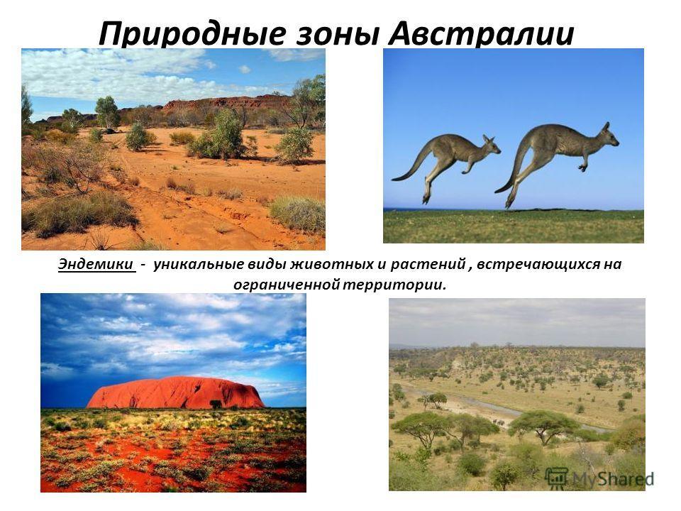 Природные зоны Австралии Эндемики - уникальные виды животных и растений, встречающихся на ограниченной территории.