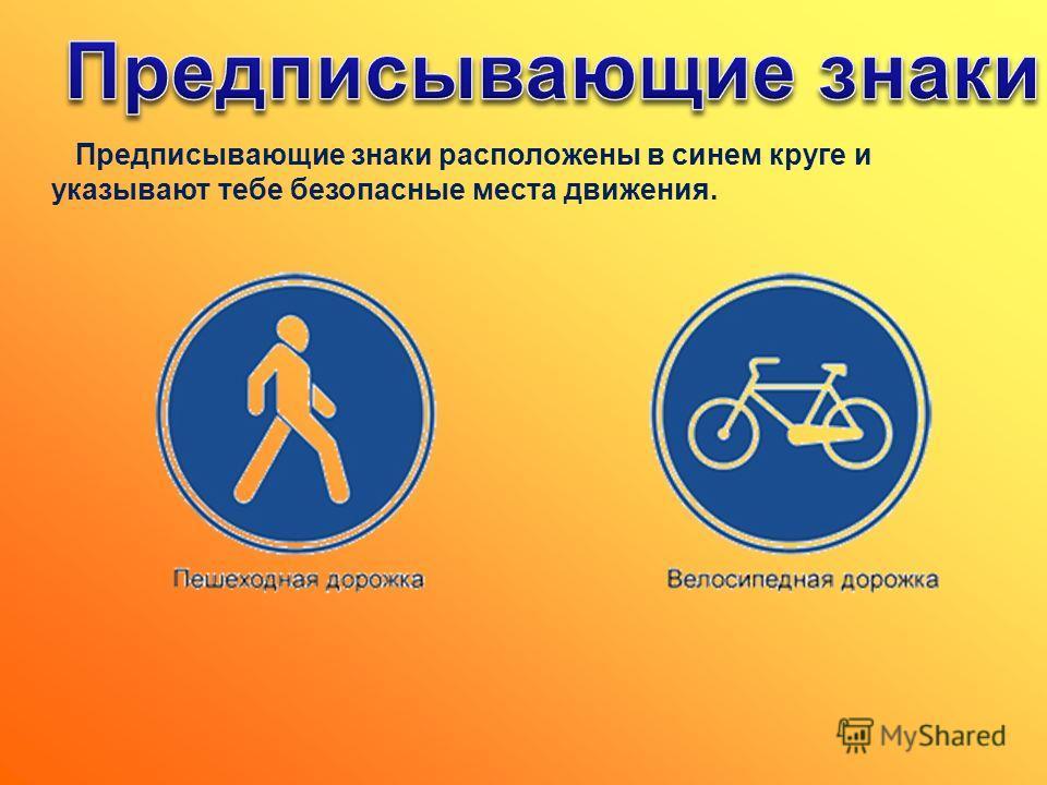 Предписывающие знаки расположены в синем круге и указывают тебе безопасные места движения.