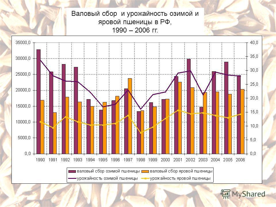 Валовый сбор и урожайность озимой и яровой пшеницы в РФ, 1990 – 2006 гг.