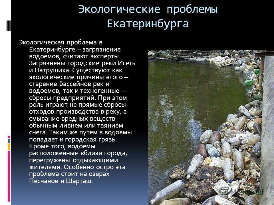 Экологические проблемы Екатеринбурга Экологическая проблема в Екатеринбурге – загрязнение водоемов, считают эксперты. Загрязнены городские реки Исеть и Патрушиха. Существуют как экологические причины этого – старение бассейнов рек и водоемов, так и т