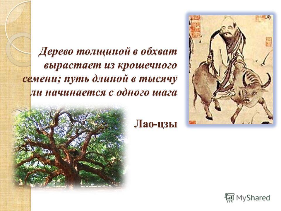 Дерево толщиной в обхват вырастает из крошечного семени; путь длиной в тысячу ли начинается с одного шага Лао-цзы