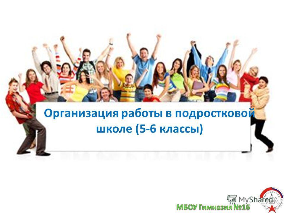 Организация работы в подростковой школе (5-6 классы)