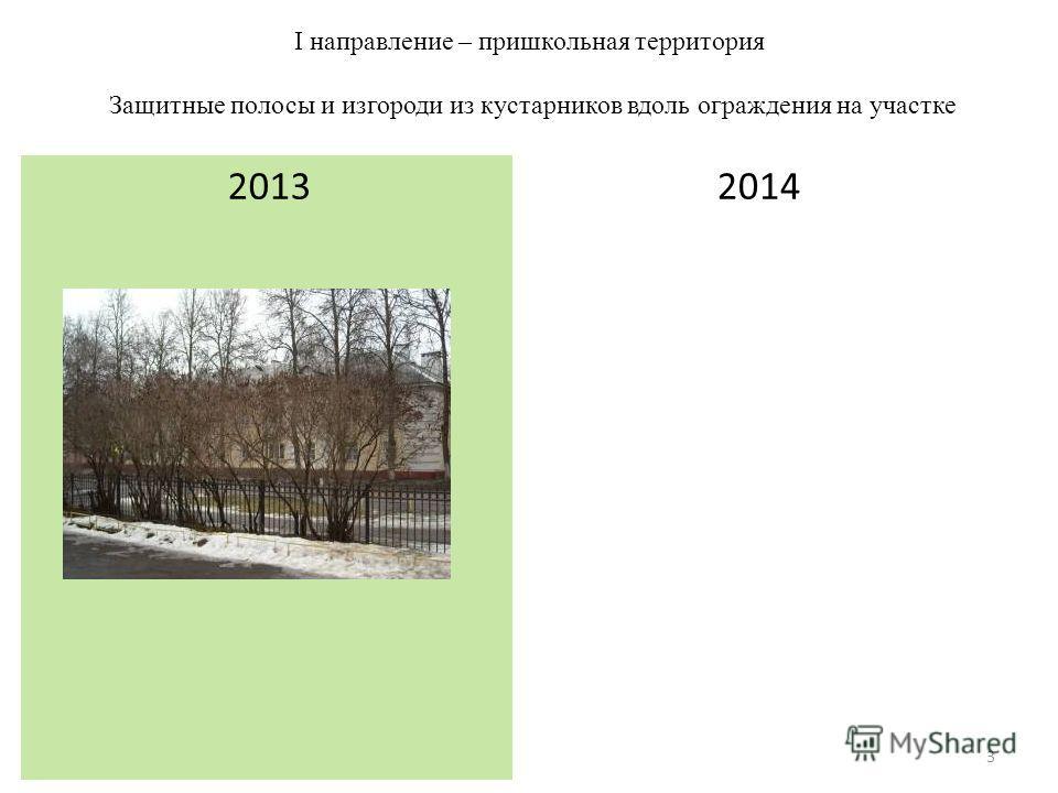 I направление – пришкольная территория Защитные полосы и изгороди из кустарников вдоль ограждения на участке 2013 2014 3