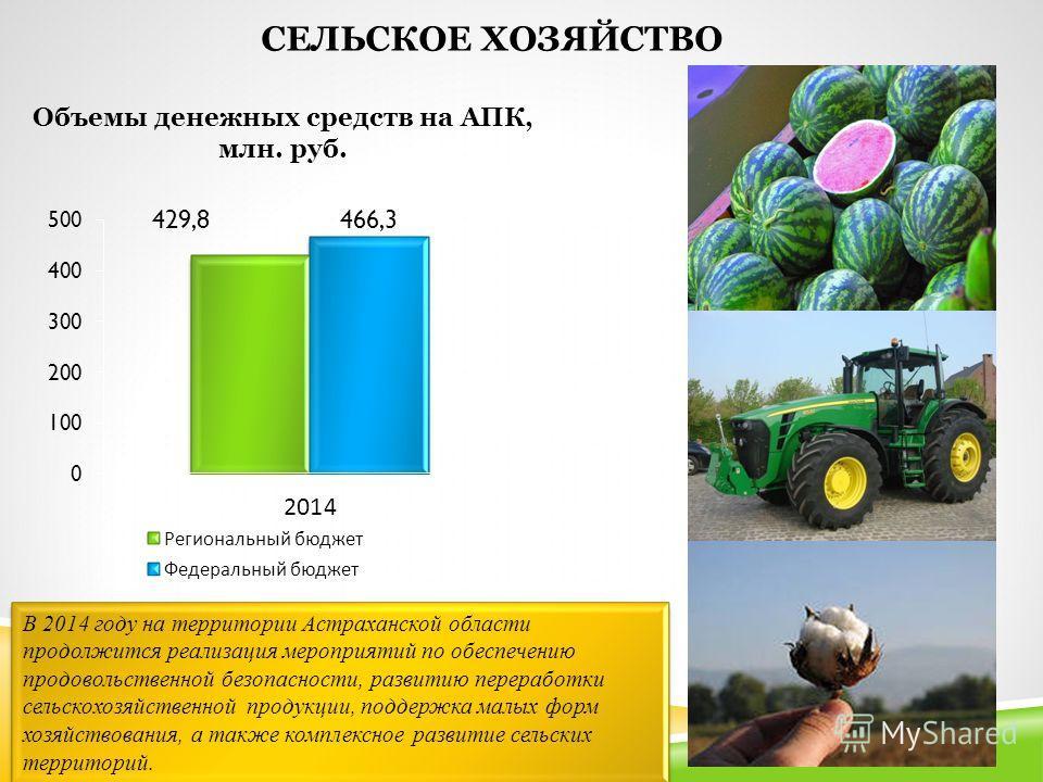 СЕЛЬСКОЕ ХОЗЯЙСТВО Объемы денежных средств на АПК, млн. руб. В 2014 году на территории Астраханской области продолжится реализация мероприятий по обеспечению продовольственной безопасности, развитию переработки сельскохозяйственной продукции, поддерж
