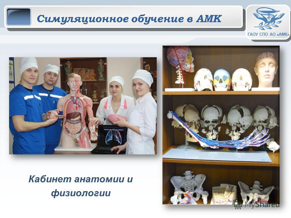 ГАОУ СПО АО «АМК» Симуляционное обучение в АМК Кабинет анатомии и физиологии