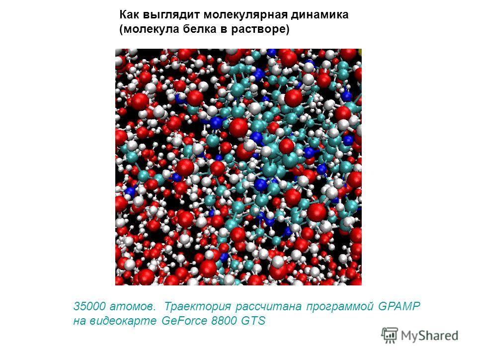 Как выглядит молекулярная динамика (молекула белка в растворе) 35000 атомов. Траектория рассчитана программой GPAMP на видеокарте GeForce 8800 GTS