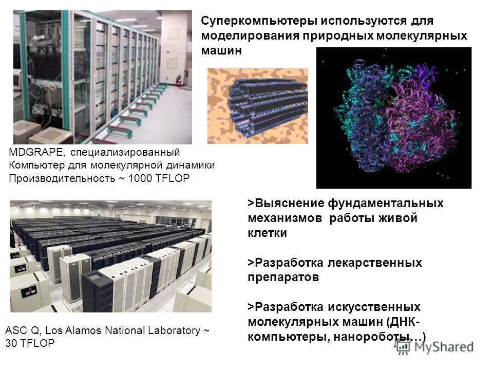 MDGRAPE, специализированный Компьютер для молекулярной динамики Производительность ~ 1000 TFLOP ASC Q, Los Alamos National Laboratory ~ 30 TFLOP Суперкомпьютеры используются для моделирования природных молекулярных машин >Выяснение фундаментальных ме