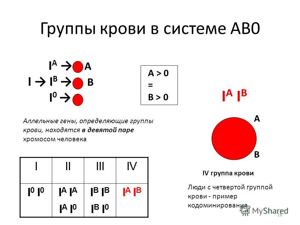 16 Группы крови в системе АВ0 I A А I I B В I 0 IIIIIIIV I 0 I A I A I 0 I B I B I 0 I A I B IV группа крови АВАВ А > 0 = В > 0 Аллельные гены, определяющие группы крови, находятся в девятой паре хромосом человека Люди с четвертой группой крови - при