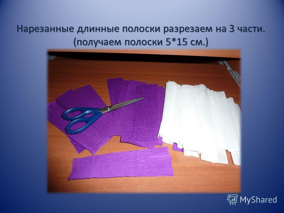 Нарезанные длинные полоски разрезаем на 3 части. (получаем полоски 5*15 см.)