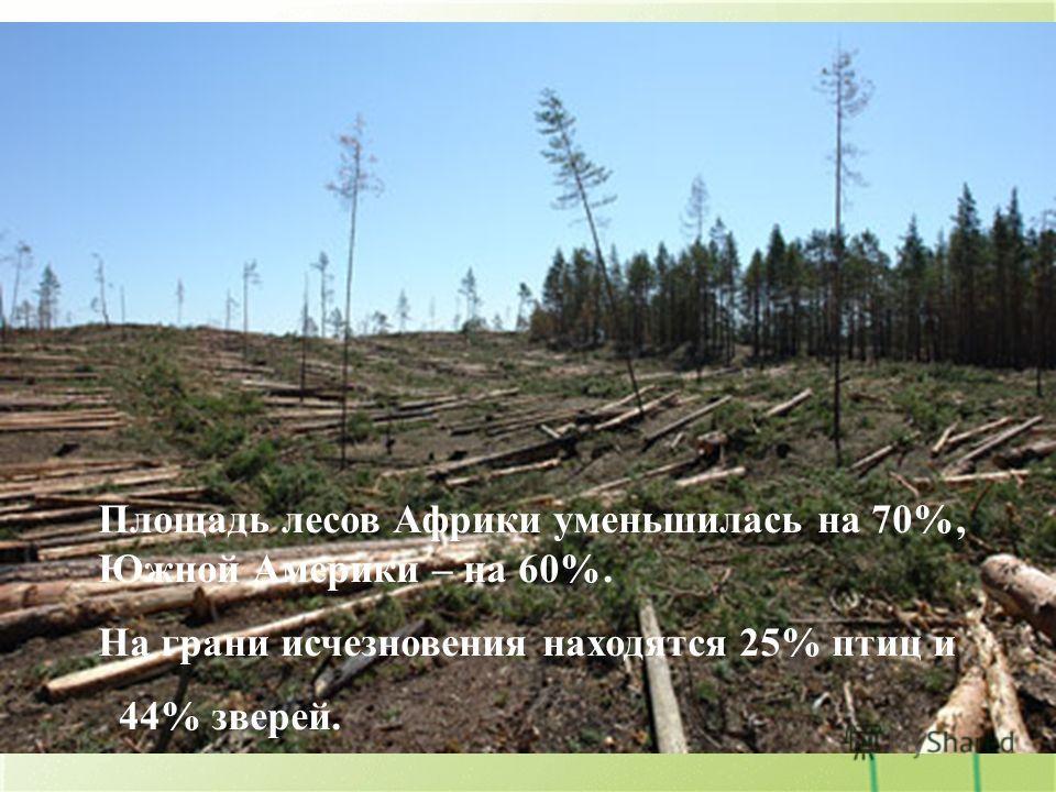 На грани исчезновения находится 25% птиц и 44% зверей. Площадь лесов Африки уменьшилась на 70%, Южной Америки – на 60%. Площадь лесов Африки уменьшилась на 70%, Южной Америки – на 60%. На грани исчезновения находятся 25% птиц и 44% зверей.