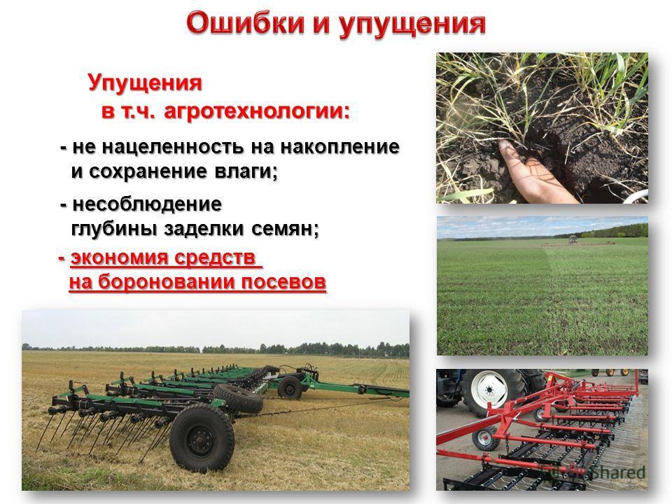 - несоблюдение глубины заделки семян; глубины заделки семян; - экономия средств на бороновании посевов Упущения в т.ч. агротехнологии: в т.ч. агротехнологии: - не нацеленность на накопление и сохранение влаги; и сохранение влаги; 20