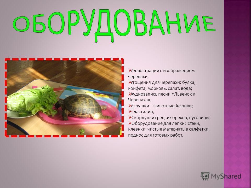 Иллюстрации с изображением черепахи; Угощения для черепахи: булка, конфета, морковь, салат, вода; Аудиозапись песни «Львенок и Черепаха»; Игрушки – животные Африки; Пластилин; Скорлупки грецких орехов, пуговицы; Оборудование для лепки: стеки, клеенки