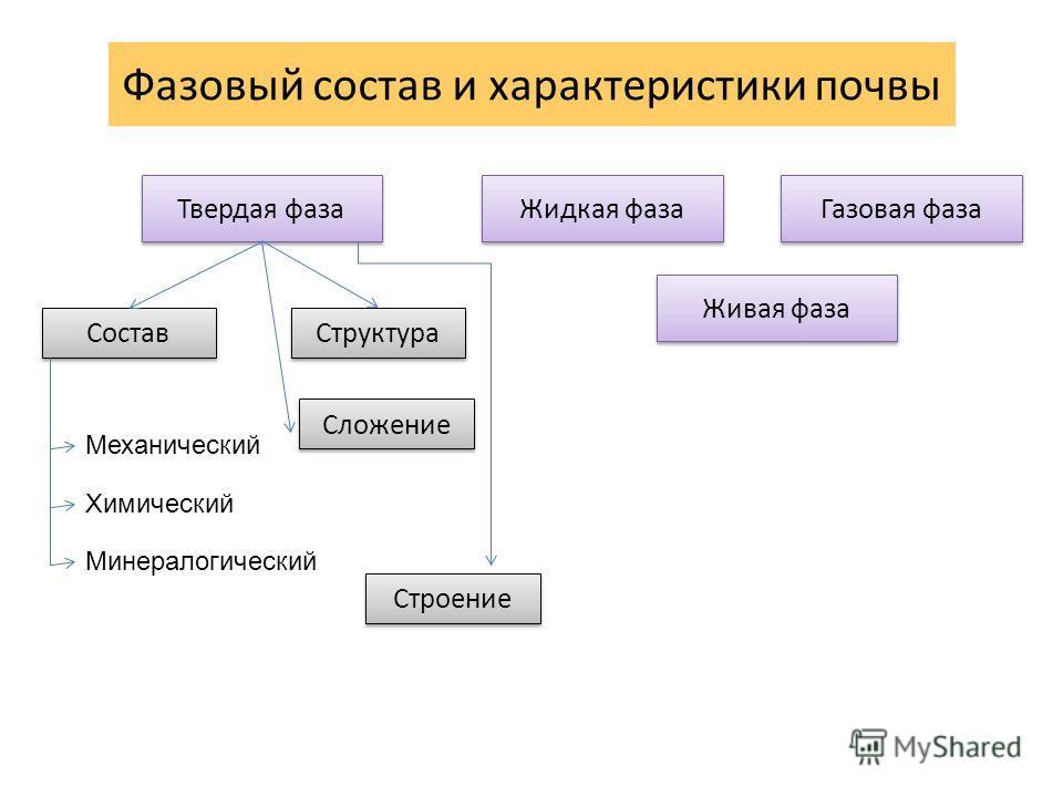 Фазовый состав и характеристики почвы Твердая фаза Жидкая фаза Газовая фаза Живая фаза Состав Структура Механический Химический Минералогический Сложение Строение