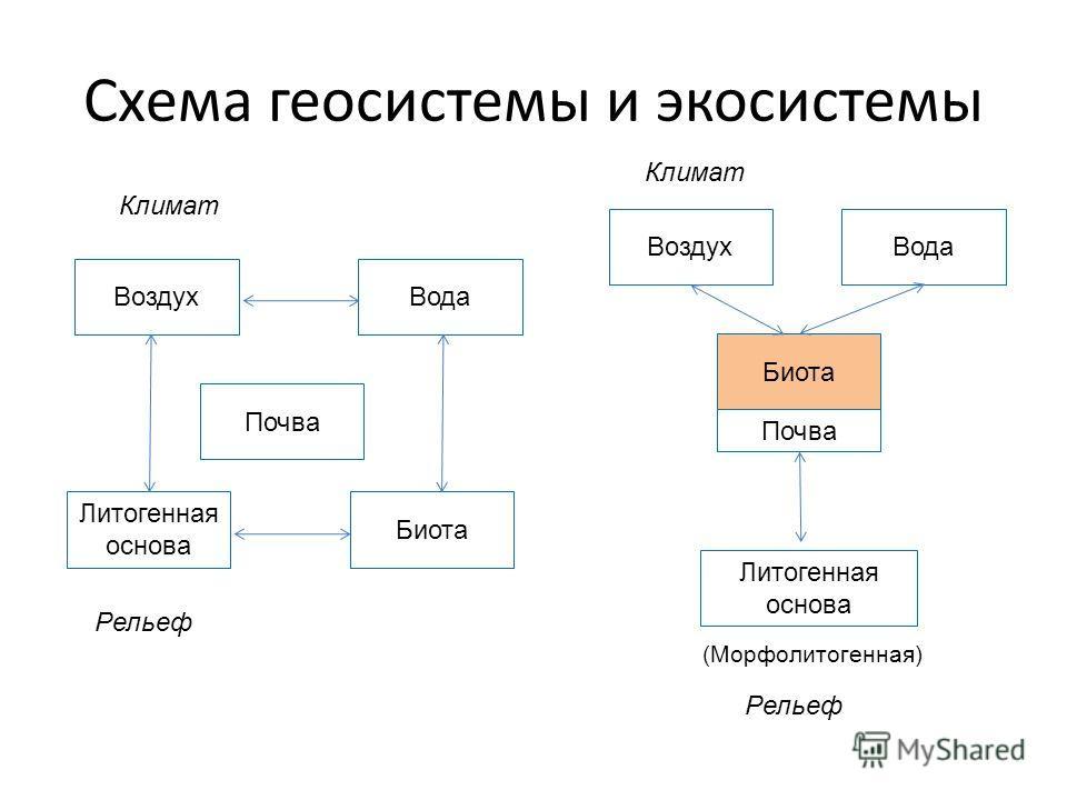 Схема геосистемы и экосистемы ВоздухВода Литогенная основа Биота Почва ВоздухВода Литогенная основа Биота Почва Рельеф Климат (Морфолитогенная) Рельеф Климат