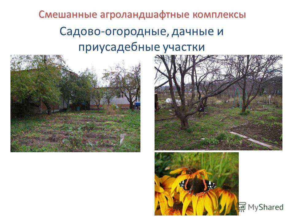 Смешанные агроландшафтные комплексы Садово-огородные, дачные и приусадебные участки