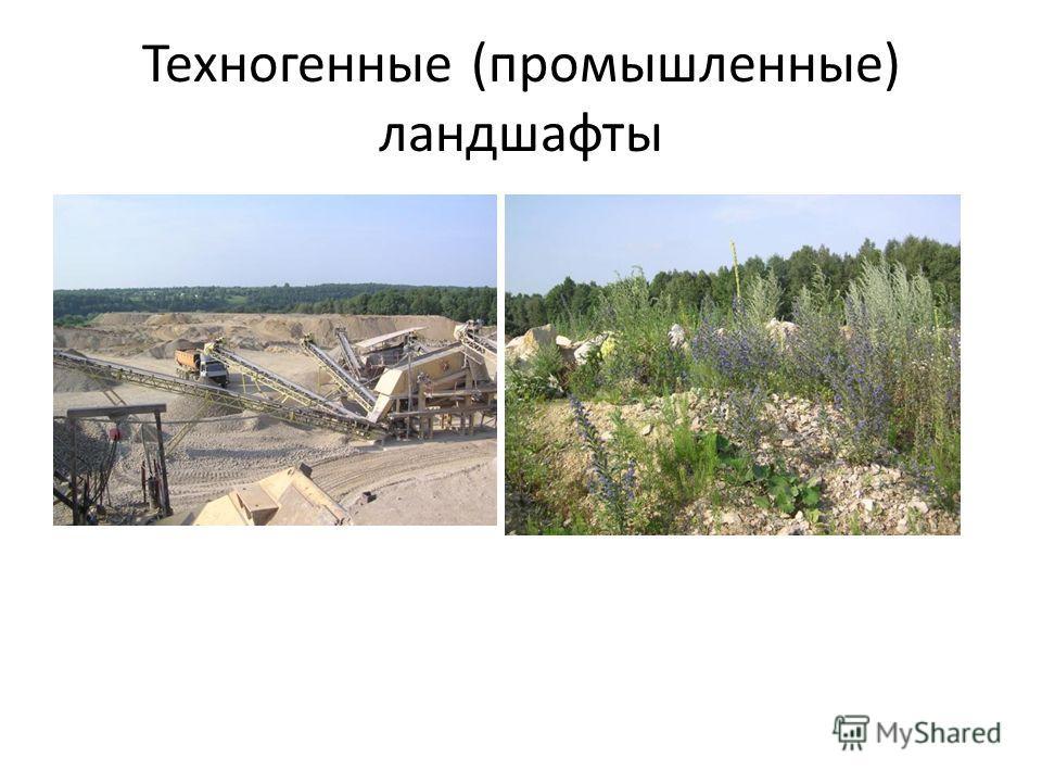 Техногенные (промышленные) ландшафты