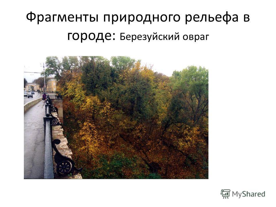 Фрагменты природного рельефа в городе: Березуйский овраг