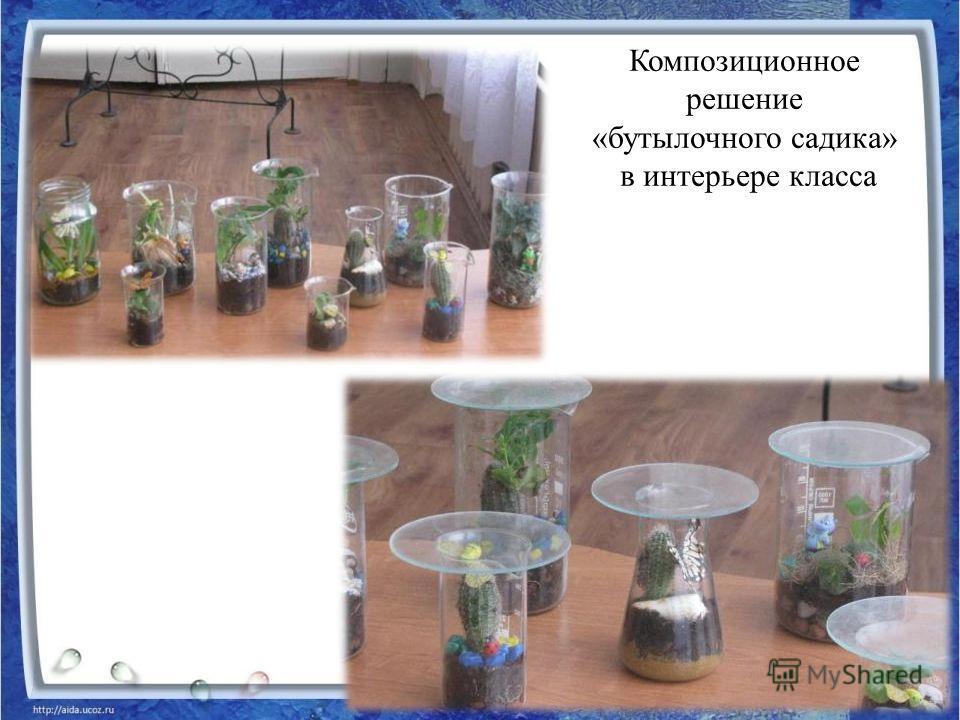 Композиционное решение «бутылочного садика» в интерьере класса
