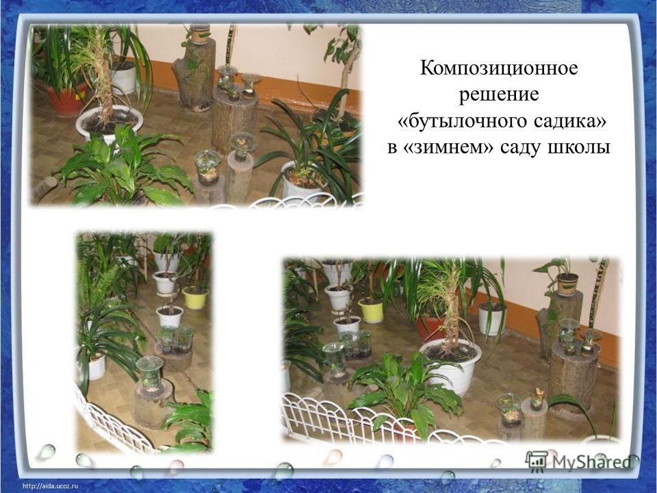 Композиционное решение «бутылочного садика» в «зимнем» саду школы