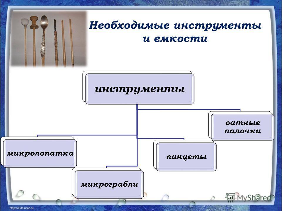 Необходимые инструменты и емкости инструменты микролопатка микрограбли пинцеты ватные палочки