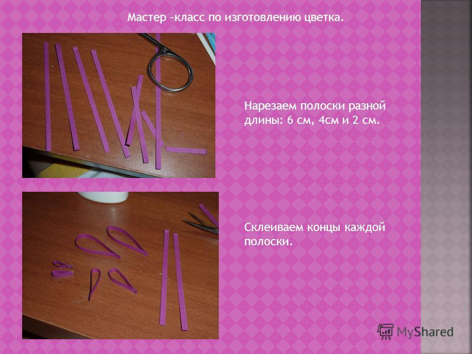 Мастер –класс по изготовлению цветка. Нарезаем полоски разной длины: 6 см, 4см и 2 см. Склеиваем концы каждой полоски.