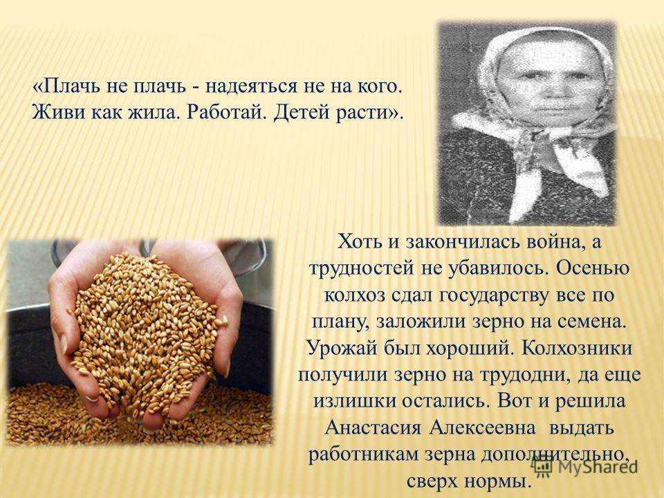 «Плачь не плачь - надеяться не на кого. Живи как жила. Работай. Детей расти». Хоть и закончилась война, а трудностей не убавилось. Осенью колхоз сдал государству все по плану, заложили зерно на семена. Урожай был хороший. Колхозники получили зерно на