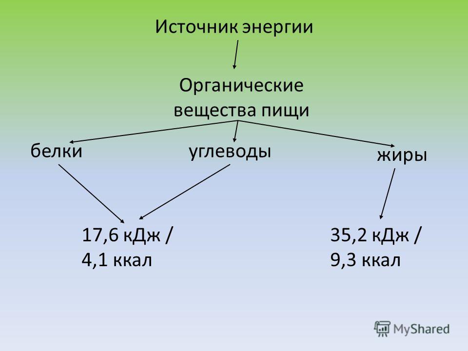 Источник энергии Органические вещества пищи белкиуглеводы жиры 17,6 кДж / 4,1 ккал 35,2 кДж / 9,3 ккал
