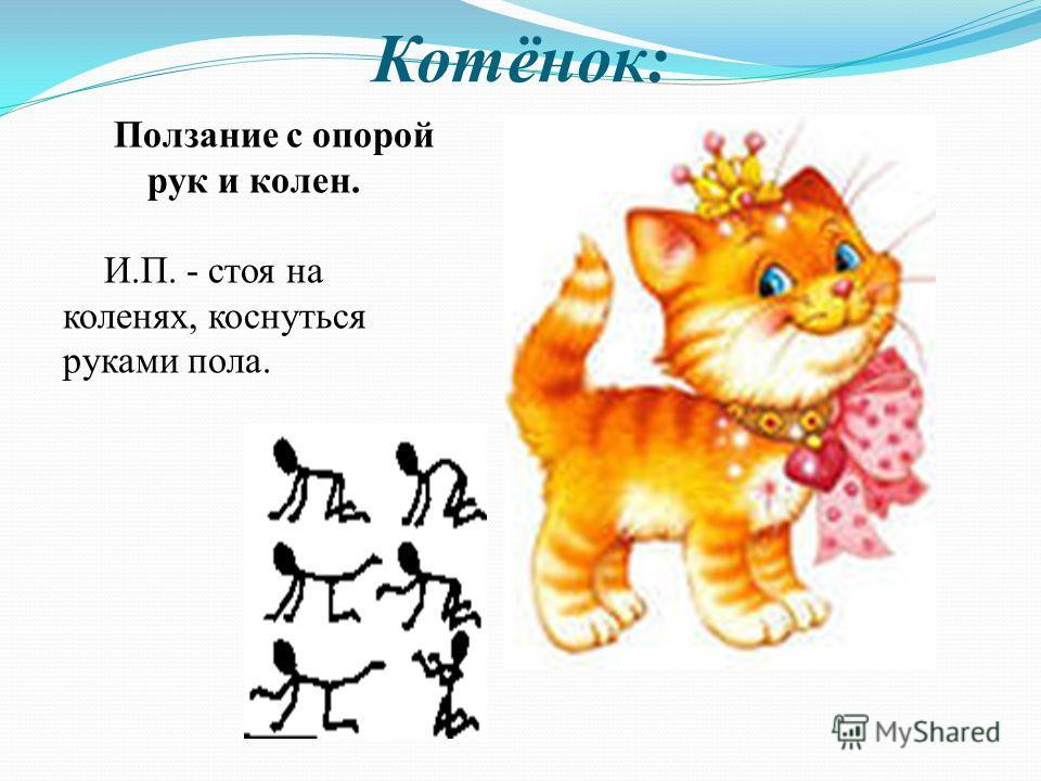 Котёнок: Ползание с опорой рук и колен. И.П. - стоя на коленях, коснуться руками пола.
