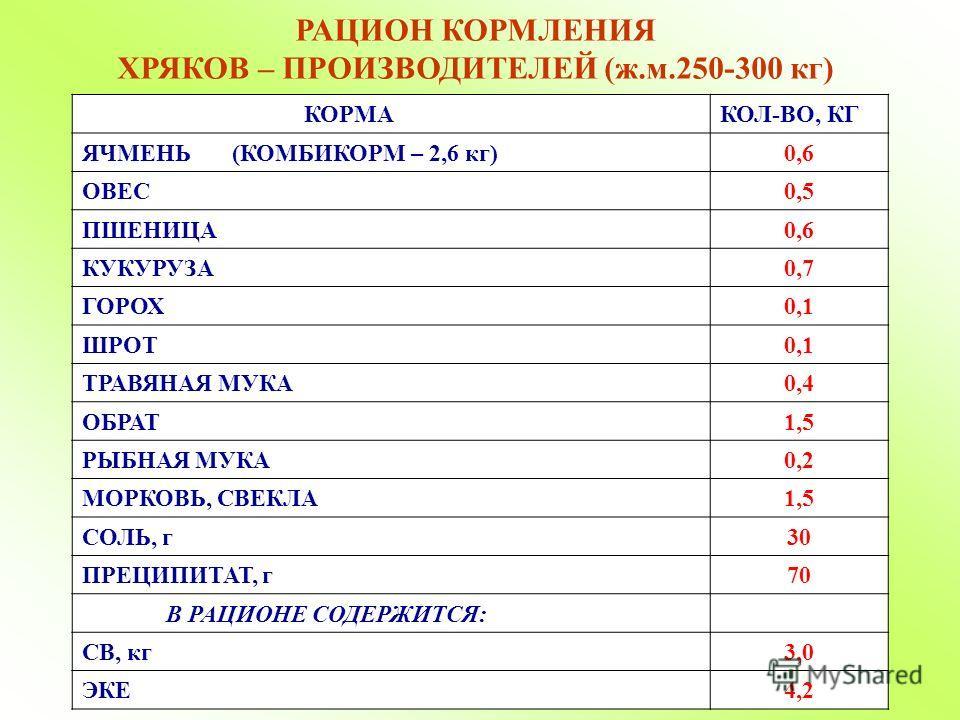 РАЦИОН КОРМЛЕНИЯ ХРЯКОВ – ПРОИЗВОДИТЕЛЕЙ (ж.м.250-300 кг) КОРМАКОЛ-ВО, КГ ЯЧМЕНЬ (КОМБИКОРМ – 2,6 кг)0,6 ОВЕС0,5 ПШЕНИЦА0,6 КУКУРУЗА0,7 ГОРОХ0,1 ШРОТ0,1 ТРАВЯНАЯ МУКА0,4 ОБРАТ1,5 РЫБНАЯ МУКА0,2 МОРКОВЬ, СВЕКЛА1,5 СОЛЬ, г30 ПРЕЦИПИТАТ, г70 В РАЦИОНЕ С