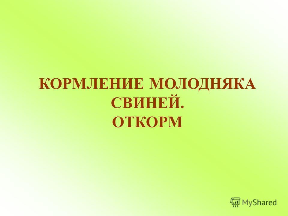 КОРМЛЕНИЕ МОЛОДНЯКА СВИНЕЙ. ОТКОРМ
