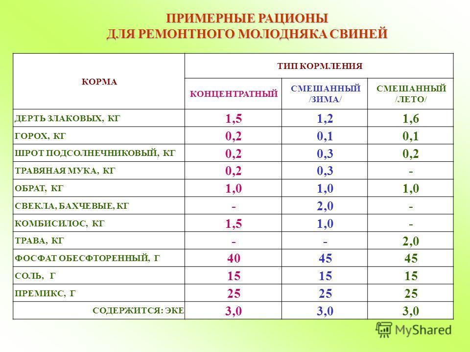 ПРИМЕРНЫЕ РАЦИОНЫ ДЛЯ РЕМОНТНОГО МОЛОДНЯКА СВИНЕЙ КОРМА ТИП КОРМЛЕНИЯ КОНЦЕНТРАТНЫЙ СМЕШАННЫЙ /ЗИМА/ СМЕШАННЫЙ /ЛЕТО/ ДЕРТЬ ЗЛАКОВЫХ, КГ 1,51,21,6 ГОРОХ, КГ 0,20,1 ШРОТ ПОДСОЛНЕЧНИКОВЫЙ, КГ 0,20,30,2 ТРАВЯНАЯ МУКА, КГ 0,20,3- ОБРАТ, КГ 1,0 СВЕКЛА, БА