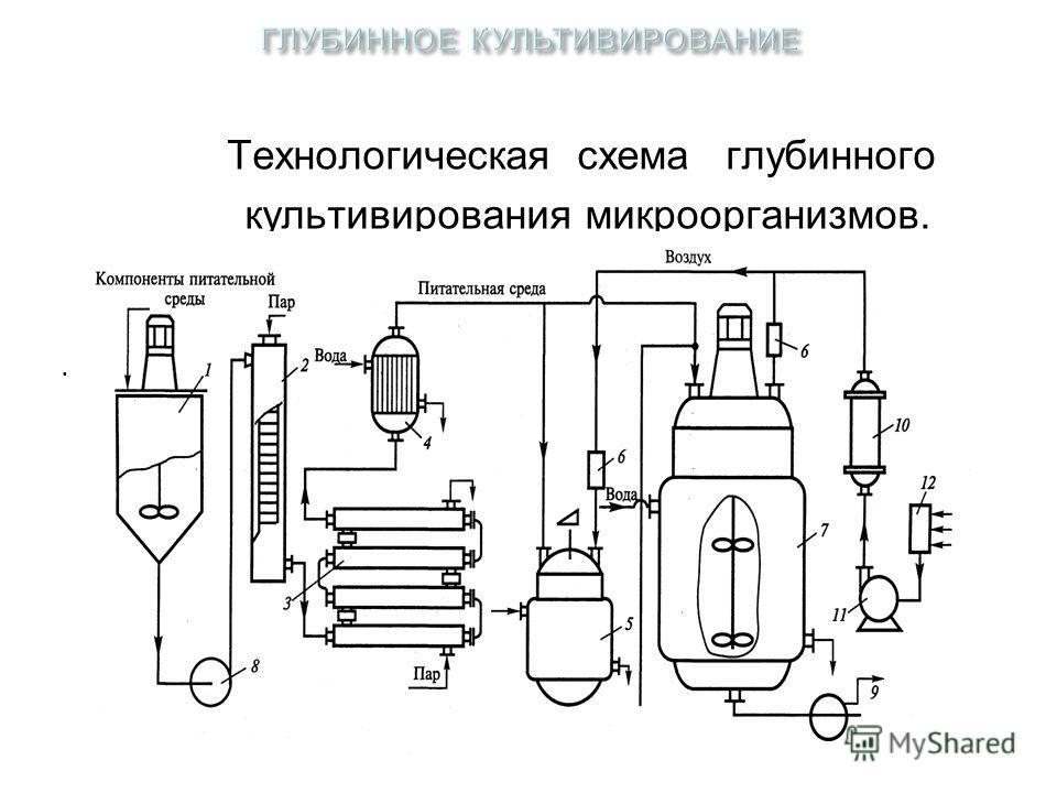 Технологическая схема глубинного культивирования микроорганизмов..