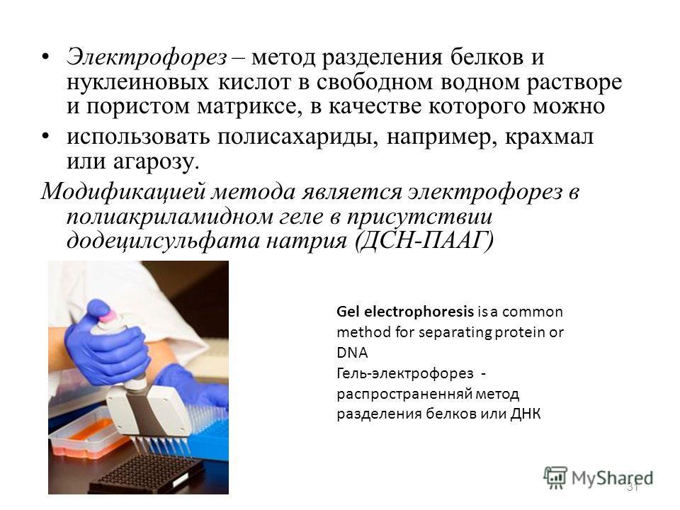 Электрофорез – метод разделения белков и нуклеиновых кислот в свободном водном растворе и пористом матриксе, в качестве которого можно использовать полисахариды, например, крахмал или агарозу. Модификацией метода является электрофорез в полиакриламид