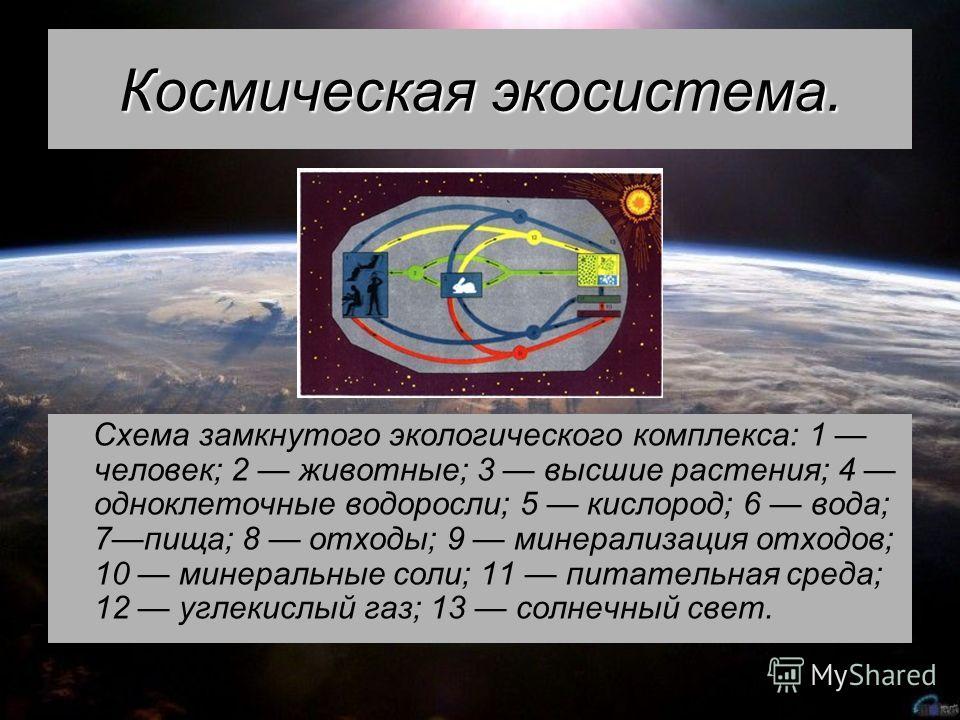 Космическая экосистема. Схема замкнутого экологического комплекса: 1 человек; 2 животные; 3 высшие растения; 4 одноклеточные водоросли; 5 кислород; 6 вода; 7пища; 8 отходы; 9 минерализация отходов; 10 минеральные соли; 11 питательная среда; 12 углеки
