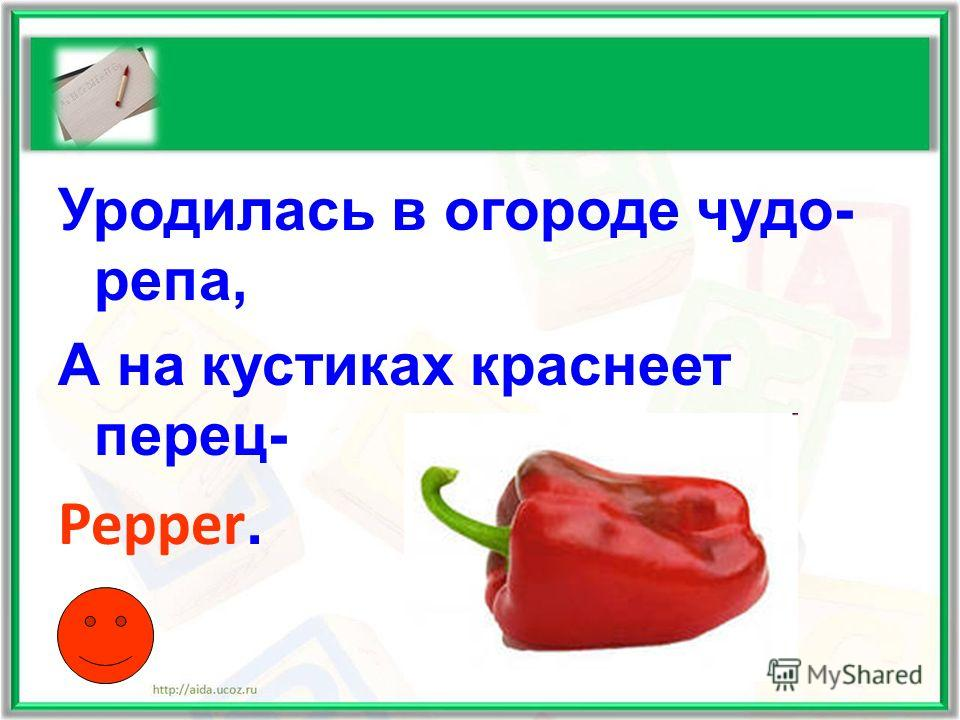 Уродилась в огороде чудо- репа, А на кустиках краснеет перец- Pepper.